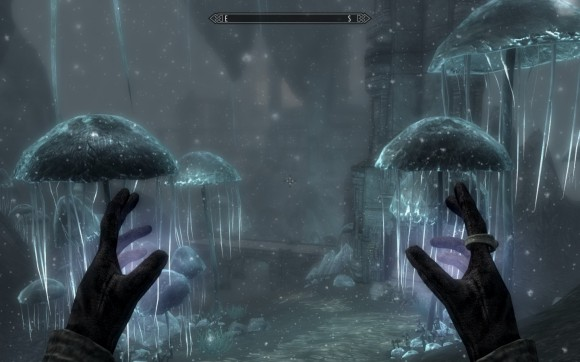 Skyrim - the fungus kingdom